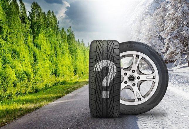 Две шины на дороге, лето и зима