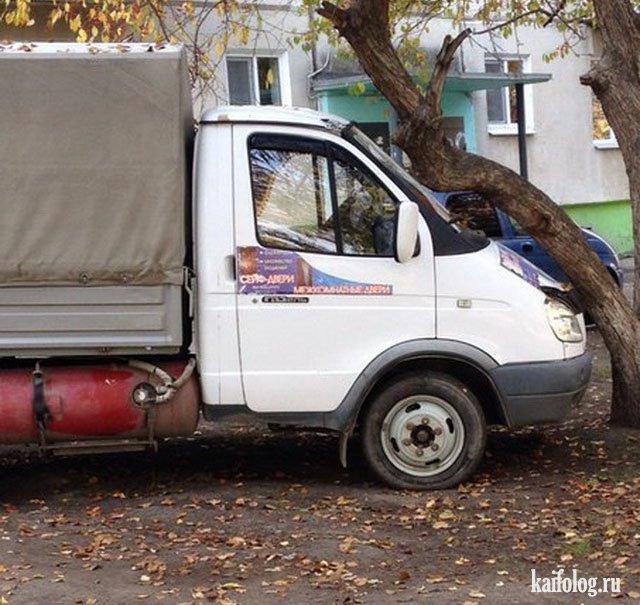 Машина припарковалась к дереву