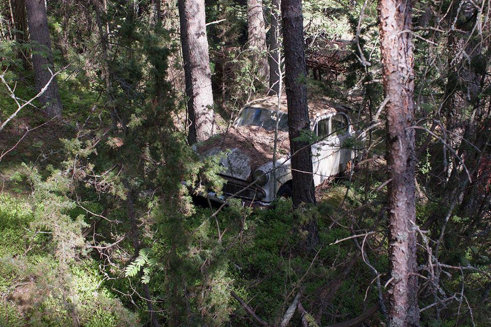 Ржавый советский автомобиль в лесу