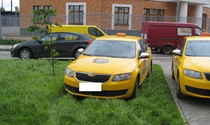 Такси на газоне
