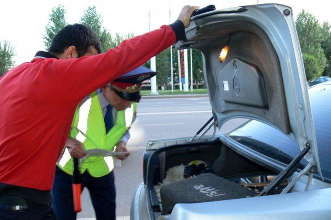 Инспектор проверяет багажник
