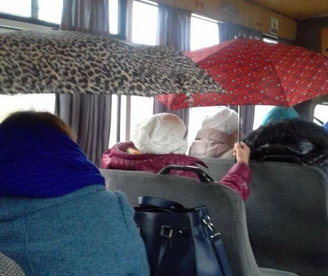 Дождь в автобусе
