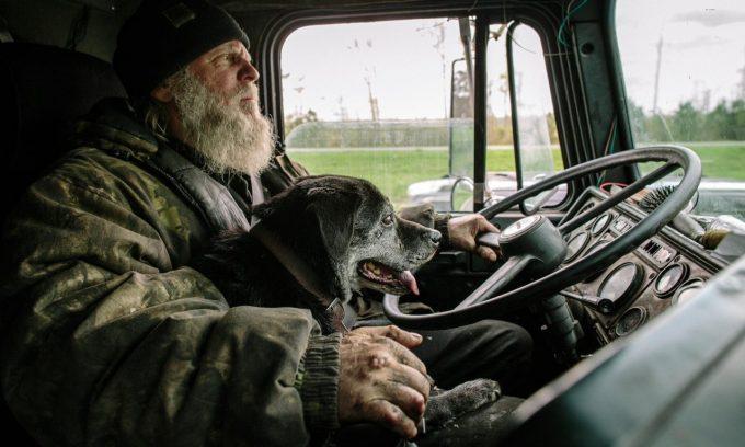 Водитель с собакой
