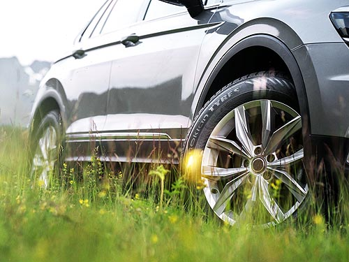 Машина едет по траве