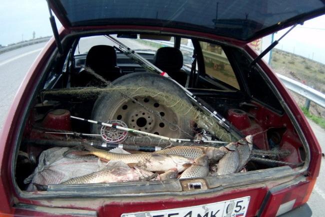 Рыба и удочки в багажнике