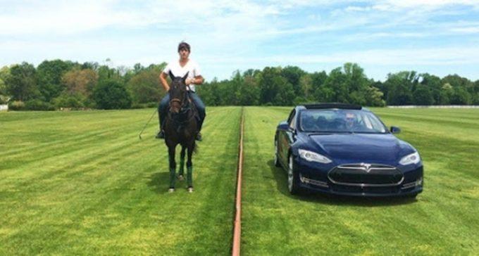 Tesla соревнуется с лошадью