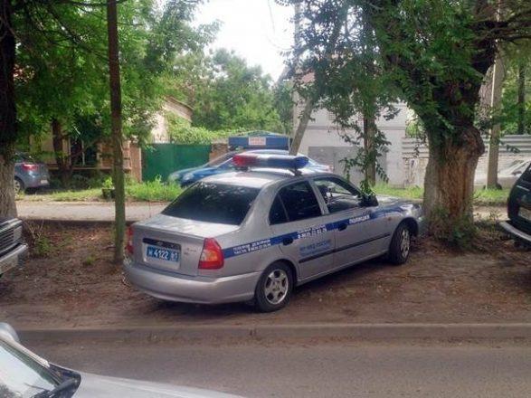 Полицейская машина на газоне