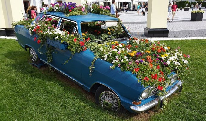 Цветы в автомобиле-клумбе