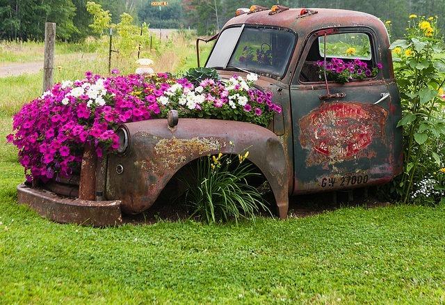 Клумба в старом грузовике