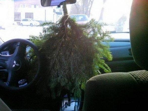 Ветка елки в салоне авто
