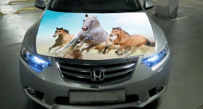 Наклейка на капоте авто с сайта AliExpress